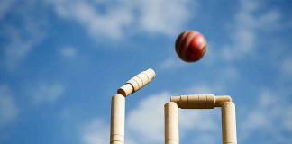 Play Fantasy Cricket- Earn Online Cash