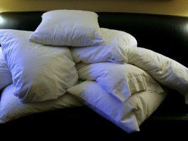 Boddy Pillows